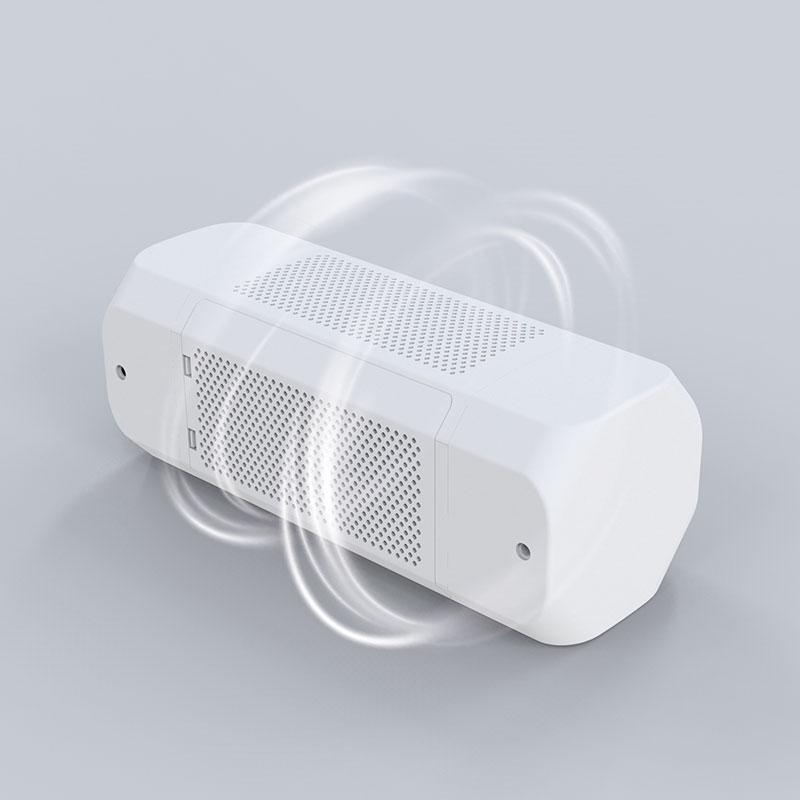 Car Air Purifier C1