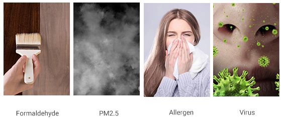 what's in your air?